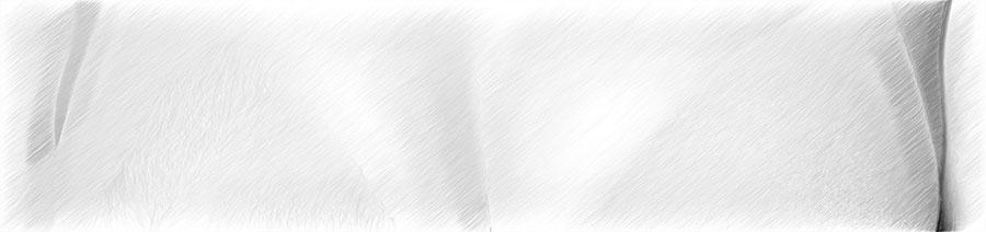Ästhetische Behandlung des Dekollete | hautok und hautok cosmetics